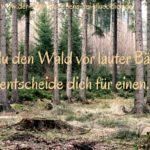 #Entscheidungen treffen – einfacher und entspannter ;-)
