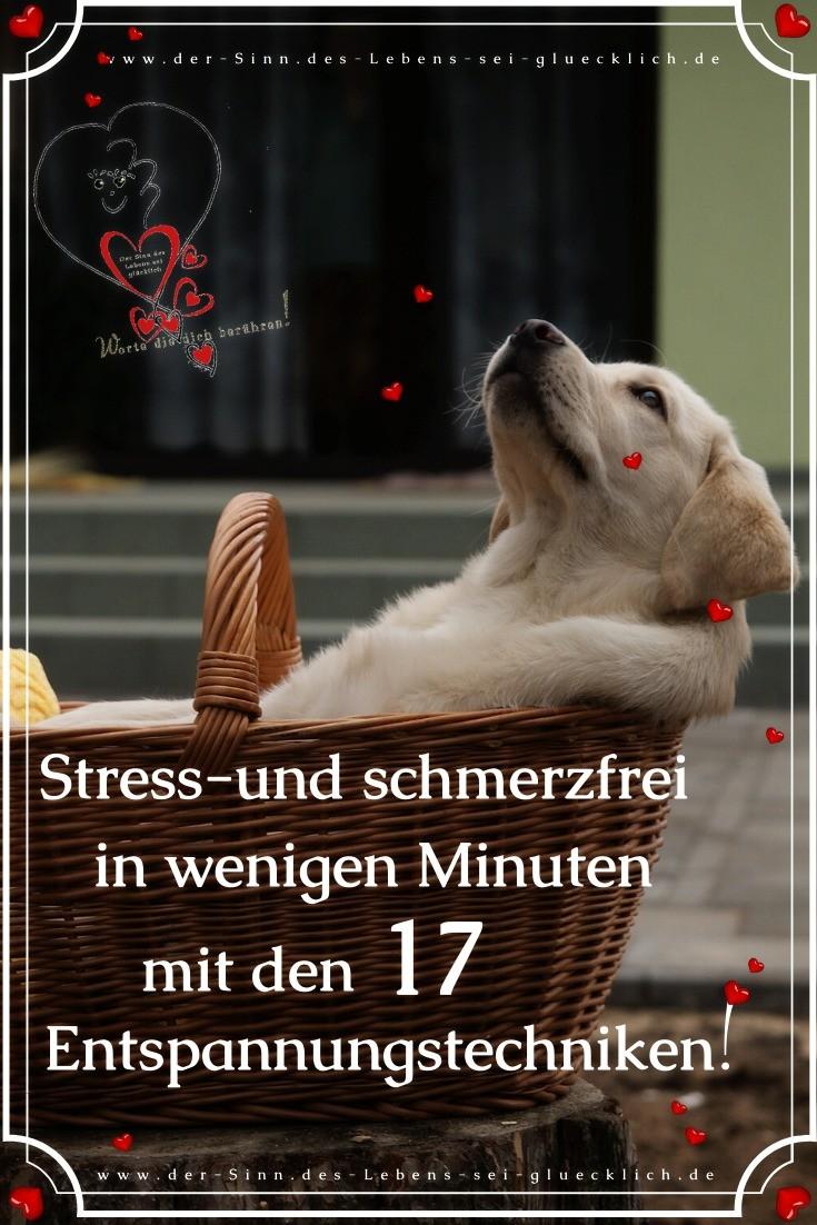 Entspannungstechniken ~Stress-und schmerzfrei
